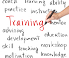 Training Development - Transfers of Learning Custom Solution Development